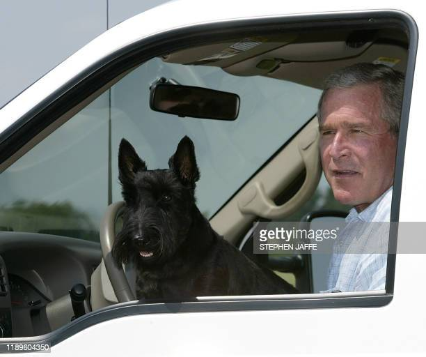 US President George W Bush drives off in his pickup truck with his dog Barney after speaking to the media with his economic team 13 August 2003 at...