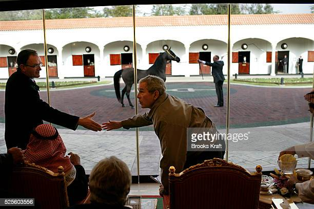 US President George W Bush greets a guest as he and Saudi King Abdullah watch as some of the King's horses are paraded during his visit to Al...
