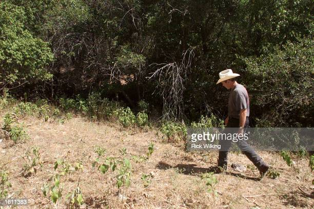 President George W Bush leads members of the press on a tour of his ranch August 25 2001 in Crawford Texas
