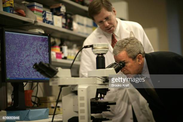 375 Kidney Cancer Photos And Premium High Res Pictures Getty Images
