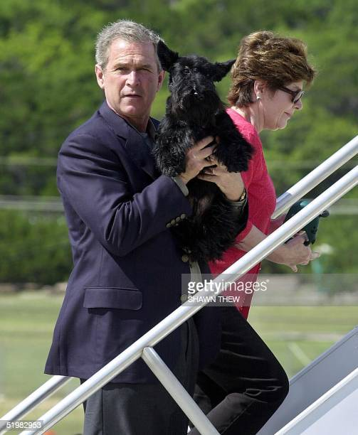 President George W Bush poses with his dog Barney 10 June 2001 as he and First Lady Laura Bush board Air Force One at Fort Hood Texas after spending...