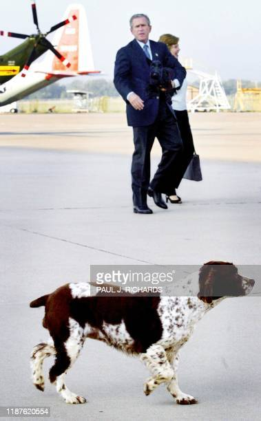 US President George W Bush yells to his dog Spot who strayed a bit as he and First Lady Laura Bush walk to the steps of Air Force One 30 September...