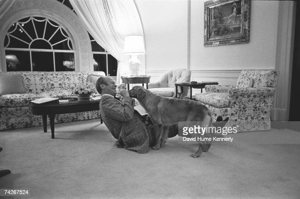 President Gerald R Ford wrestles with his new pet Golden Retriever which the Fords named Liberty February 2 1975 the second story family room of the...
