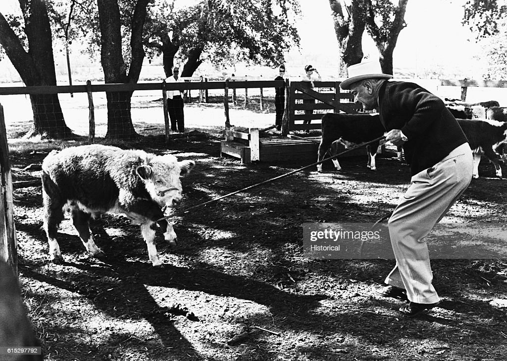 President Johnson at LBJ Ranch in Texas : News Photo