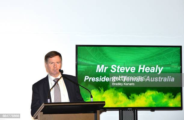 President of Tennis Australia Mr Steve Healy speaks at the official dinner at GOMA ahead of the Davis Cup World Group Quarterfinal match between...