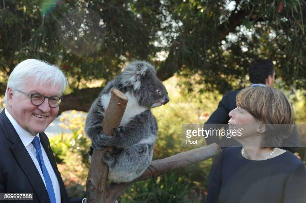 President of the Federal Republic of Germany FrankWalter Steinmeier and his wife Elke Büdenbender stand with koala 'Karen' as they visit Kings Park...