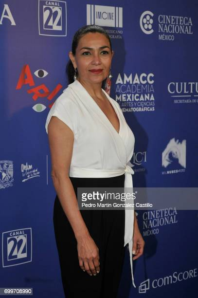 President of the Mexican Academy of Arts and Cinematographic Sciences Dolores Heredia poses during the 59th Ariel Awards Nominees Event at Fiesta...