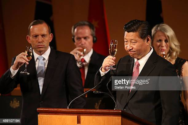 President Xi Jinping toasts during an offical dinner given by Prime Minister Tony Abbott and Margie Abbott at Parliament House on November 17, 2014...