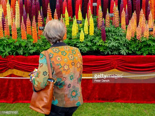 Press day at Chelsea Flower Show on May 20 2019 in London England The RHS Chelsea Flower Show takes place annually at the Royal Hospital in Central...