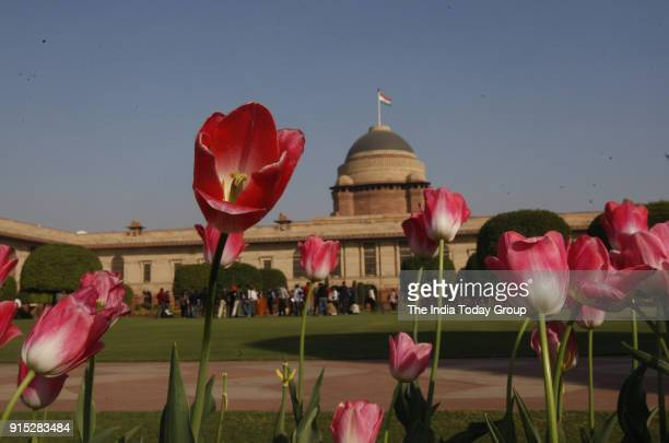 Press preview of Mughal Garden at Rashtrapati Bhawan in New Delhi.