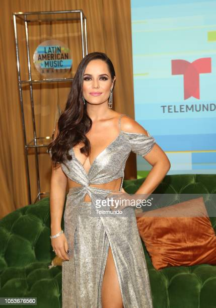 AWARDS 'Press Room' Pictured Ana Lucía Domínguez at the Dolby Theatre in Hollywood CA on October 25 2018