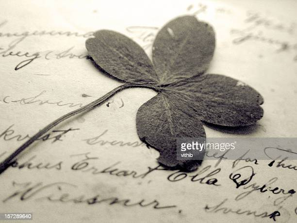 Pressed four-leaf clover in handwritten book
