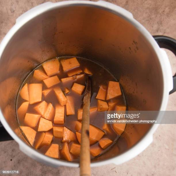 Pressure cooked beef gravy with sweet potato.