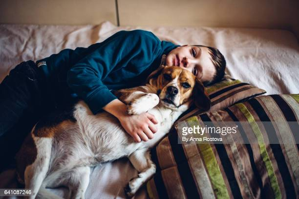 preteen boy cuddling with his dog - beagle stock pictures, royalty-free photos & images