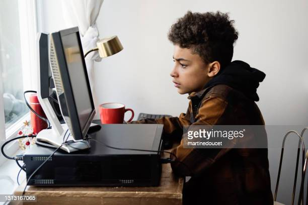 """preteen boy homeschooling on the family desk computer. - """"martine doucet"""" or martinedoucet stock pictures, royalty-free photos & images"""
