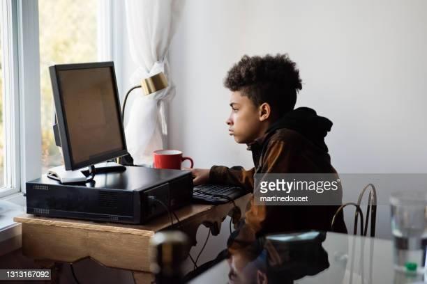 """preteen boy homeschooling on the family desk computer. - """"martine doucet"""" or martinedoucet imagens e fotografias de stock"""
