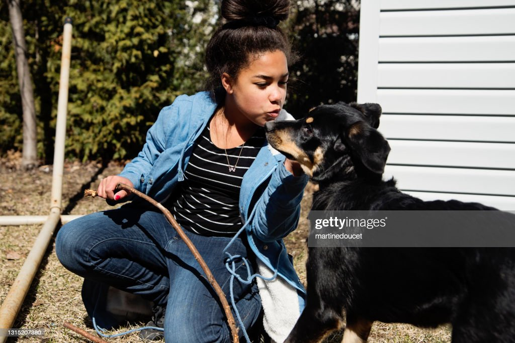 Preteen girl playing with dog outdoors in springtime. : Stock Photo