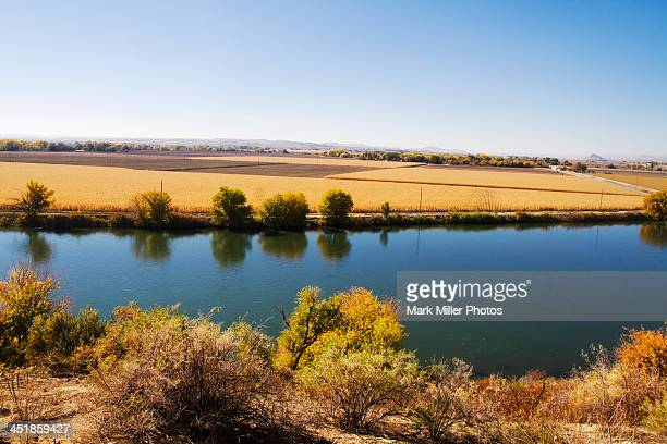 pretty fall scenery along the snake river - idaho falls stock photos and pictures