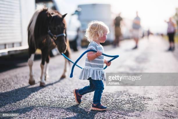 vackra lilla djur älskare - pony play bildbanksfoton och bilder