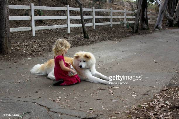 A pretty little girl in a red dress is sitting with a big dog and sharing her treats.