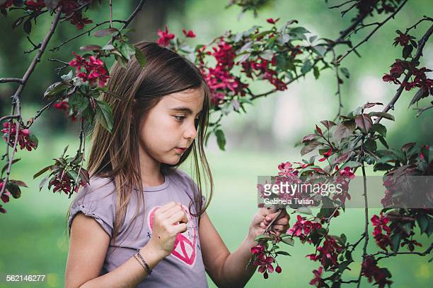Pretty little girl in the cherry blossoming tree