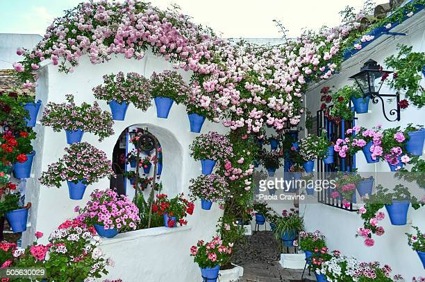 "Pretty patio in Cordoba decorated with potted flowers and plants, a well and a ""farola"" lamp on a typical white wall. A UNESCO heritage site."