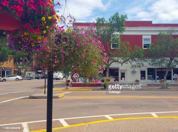 pretty small town business street corner in summer - town stock pictures, royalty-free photos & images