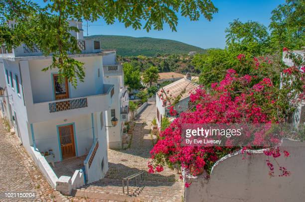 pretty street - faro city portugal stock photos and pictures