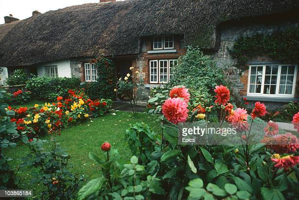 Pretty thatched cottages in the rural village of Adare County Limerick Ireland October 1990