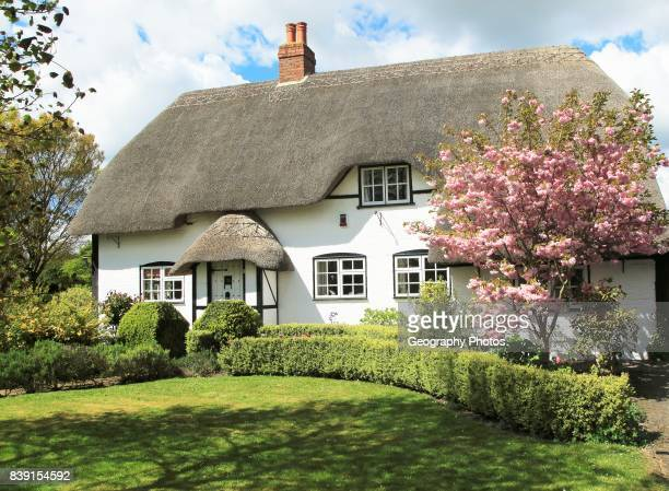 Pretty thatched country cottage and garden Allington Wiltshire England UK