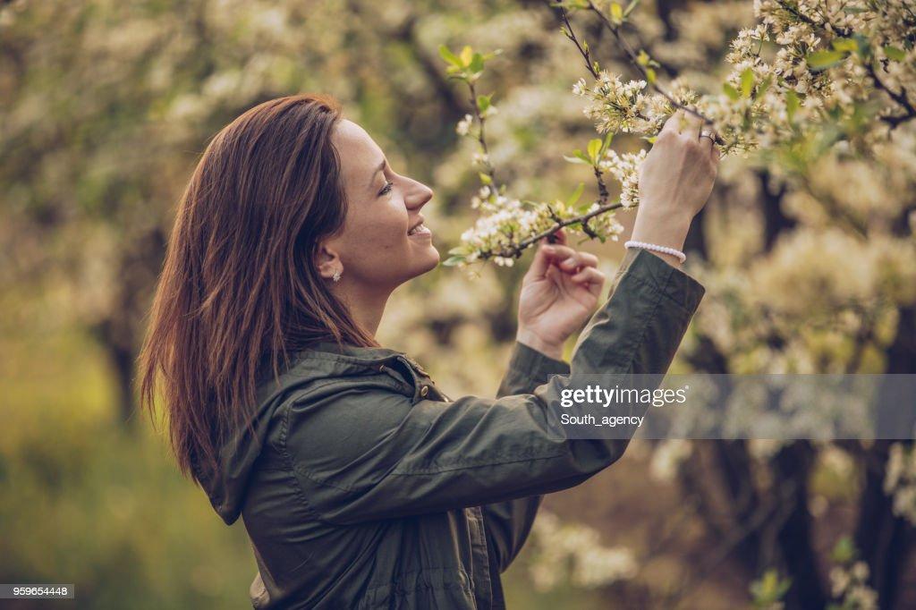 Hübsche Frau im Obstgarten : Stock-Foto