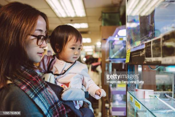 Pretty young mom checking out fishes with baby in aquarium shop joyfully.
