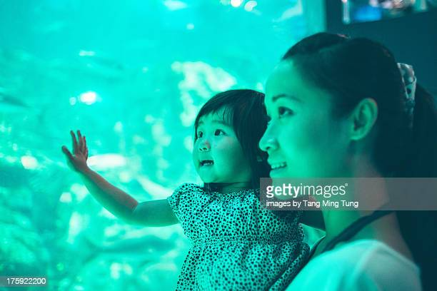 Pretty young mom holding toddler in an aquarium