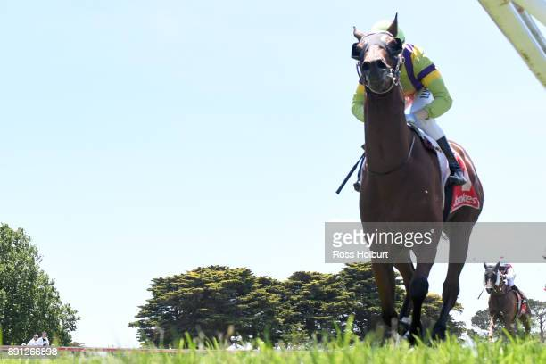 Prevailing Winds ridden by Ethan Brown wins the Mornington Auto Group Hcp at Mornington Racecourse on December 13 2017 in Mornington Australia