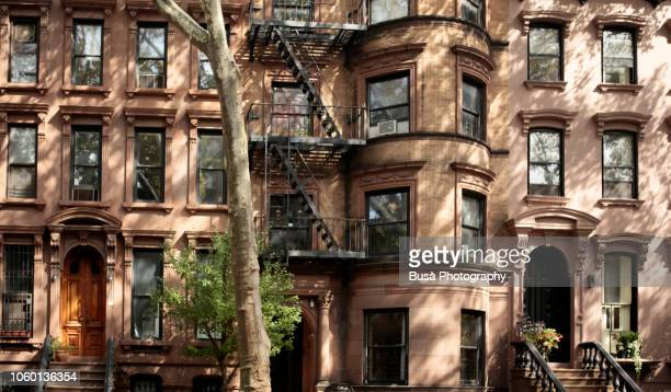 pre-war brownstones in fort greene, brooklyn, new york city - piedra caliza fotografías e imágenes de stock