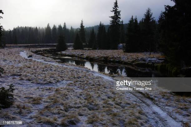 pre-winter moods with mountain meadows and scattered houses in jizerka settlement - pre season bildbanksfoton och bilder