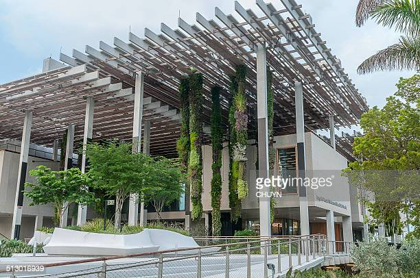 pérez art museum miami - county stock pictures, royalty-free photos & images