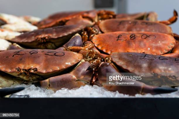 priced crabs - ksu stock photos and pictures