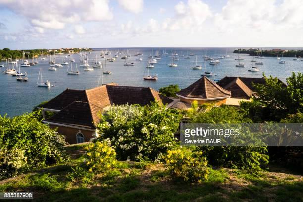 prickly bay, grenada, west indies - paisajes de isla de  granada fotografías e imágenes de stock