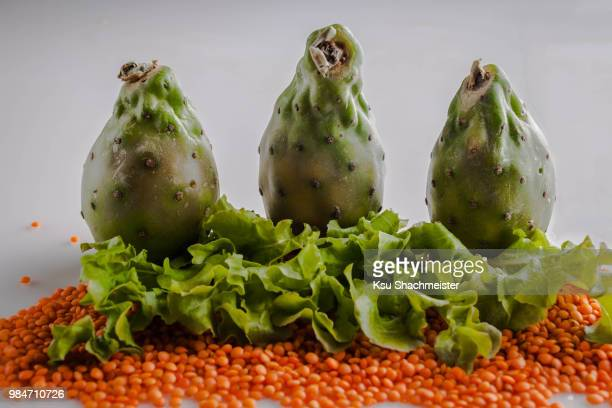 prickly pear trolls - ksu stock photos and pictures