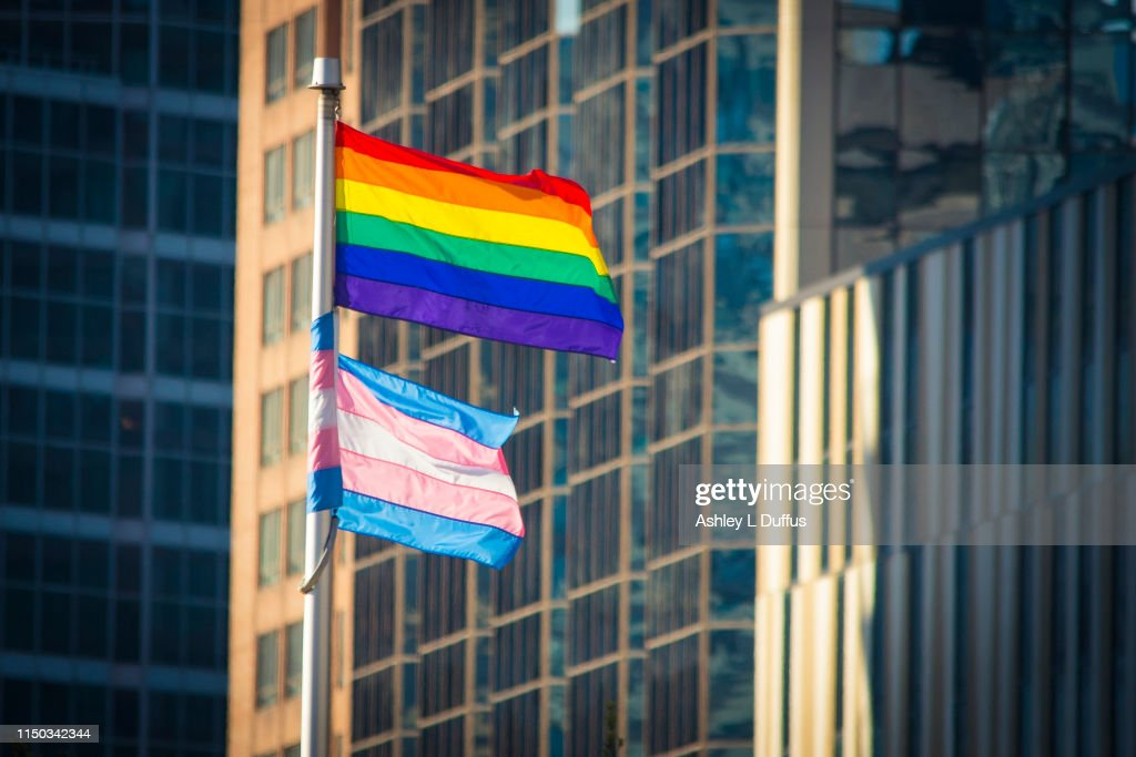 Pride Flag and Trans Flag : Stock Photo