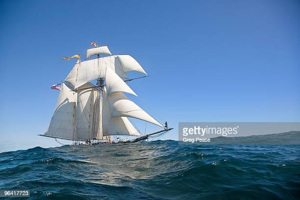 pride of baltimore ii sailing, gloucester harbor - 帆船 ストックフォトと画像