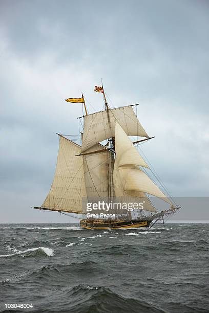 """pride of baltimore ii sailing in storm - """"greg pease"""" stock pictures, royalty-free photos & images"""