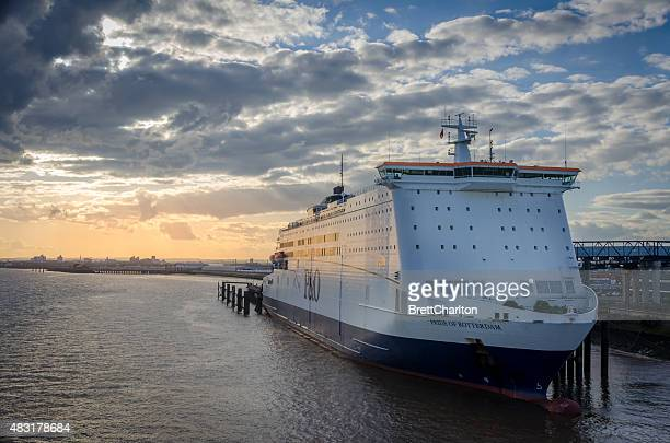 pride of rotterdam - ferry stock photos and pictures