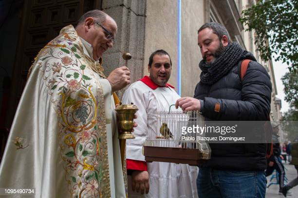 A priest blesses a bird during Saint Anthony's day at San Anton Church on January 17 2019 in Madrid Spain During San Anton day people bring their...