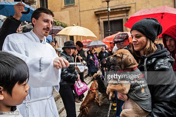 A priest blesses a dog after a traditional mass for the blessing of animals at the Sant'Eusebio church on January 20 2013 in Rome Italy Every year...