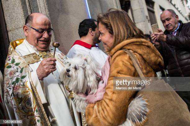 Priest blessing a dog during the day of San Anton patron of domestic animals.