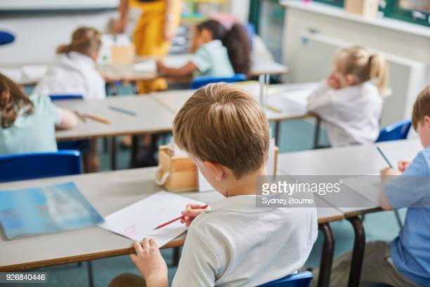 primary schoolboy and girls doing schoolwork at classroom desks, rear view - schoolkinderen stockfoto's en -beelden