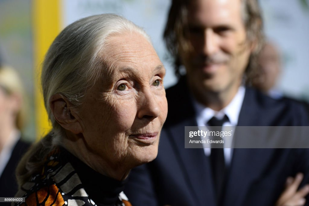 Primatologist Dr. Jane Goodall (L) and director Brett Morgen arrive at the premiere of National Geographic Documentary Films' 'Jane' at the Hollywood Bowl on October 9, 2017 in Hollywood, California.