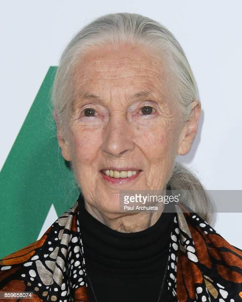 Primatologist Dr Jane Goodall attends the premiere of National Geographic documentary films' 'Jane' at the Hollywood Bowl on October 9 2017 in...